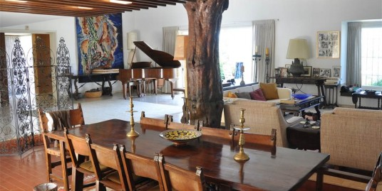Дом известного художника Реувена Рубина